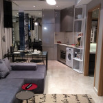 CityGate Showflat 2DK 1BR Living Room
